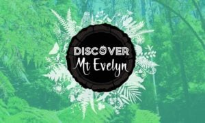 Discover Mount Evelyn